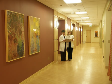 Physicians standing in lobby with beautiful paintings