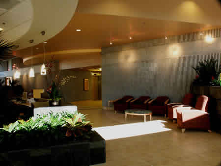 Modern lobby in the Lucy Curci Cancer Center